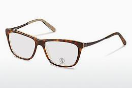 Eyewear Bogner BG510 B - Brown, Havanna