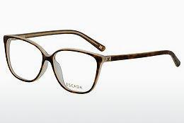 Eyewear Escada VES259 09TA - Brown, Havanna