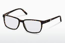Eyewear Rodenstock R7030 B - Brown, Havanna