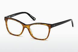 Eyewear Web Eyewear WE5233 053