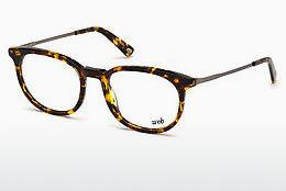 Eyewear Web Eyewear WE5246 053