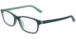 Calvin Klein CK19507 308 PINE/LIGHT GREEN
