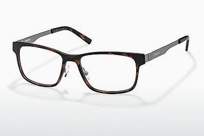 Eyewear Polaroid PLD 1P 007 3Z2 - Silver, Brown, Havanna