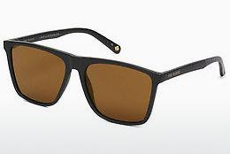 Ophthalmic Glasses Ted Baker 1502 011