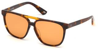 Web Eyewear WE0263 56J