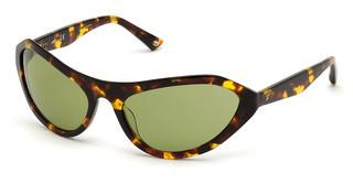 Web Eyewear WE0288 52N