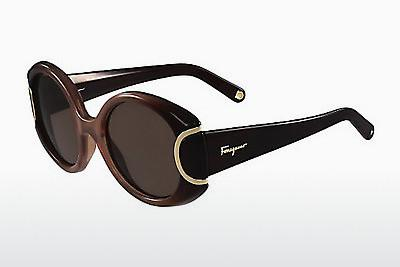 Ophthalmic Glasses Salvatore Ferragamo SF811S SIGNATURE 212 - Brown